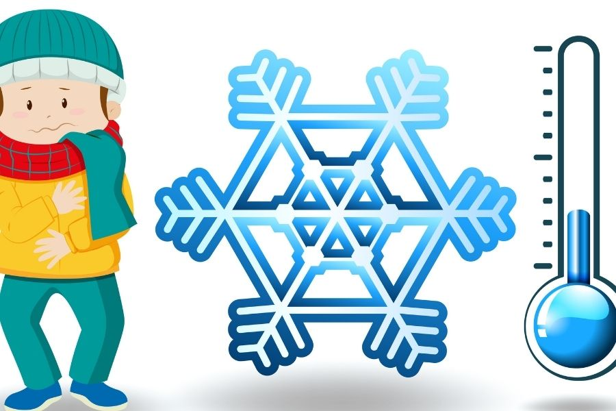 Chute des températures et retour du froid : quelles conséquences…
