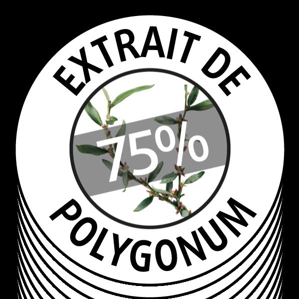 75% polygonum